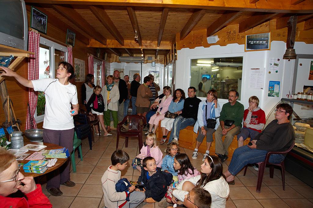 Visite de la fabrication et magasin - GAEC du Bois Joli - Producteur de Saint-Nectaire fermier