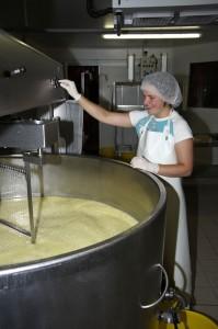 Producteur de Saint-Nectaire fermier - fabrication du saint-nectaire fermier